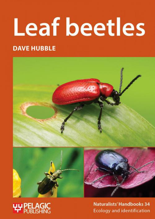 cover of new book on Leaf Beetles