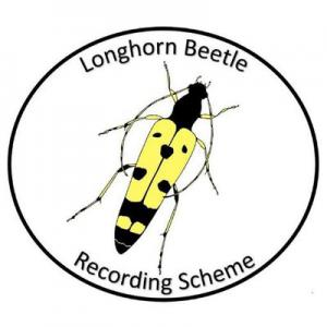 National Longhorn Beetle Recording Scheme logo